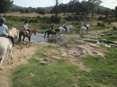 Horseriding Family Camp Gredos