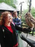 OWL SANCTUARY TECS LAND WALES